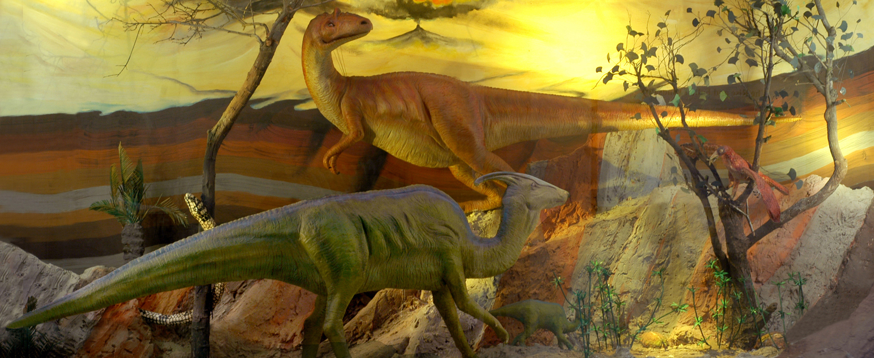 Dinosaur of India  Section